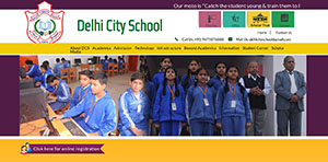 Delhi City School